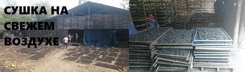 Просушивание кокосового угля для кальяна на свежем воздухе